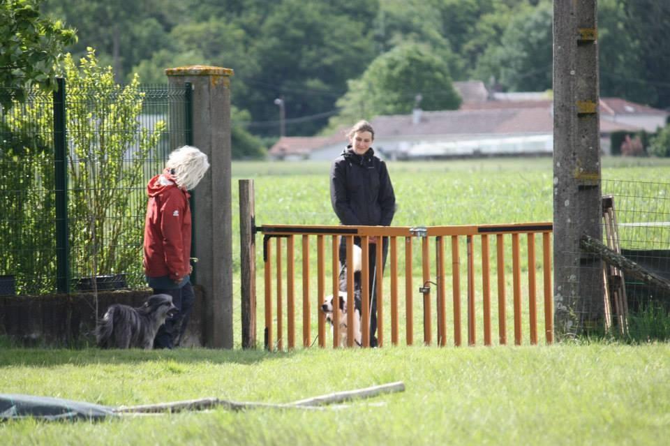 présentation de Bandit au portail