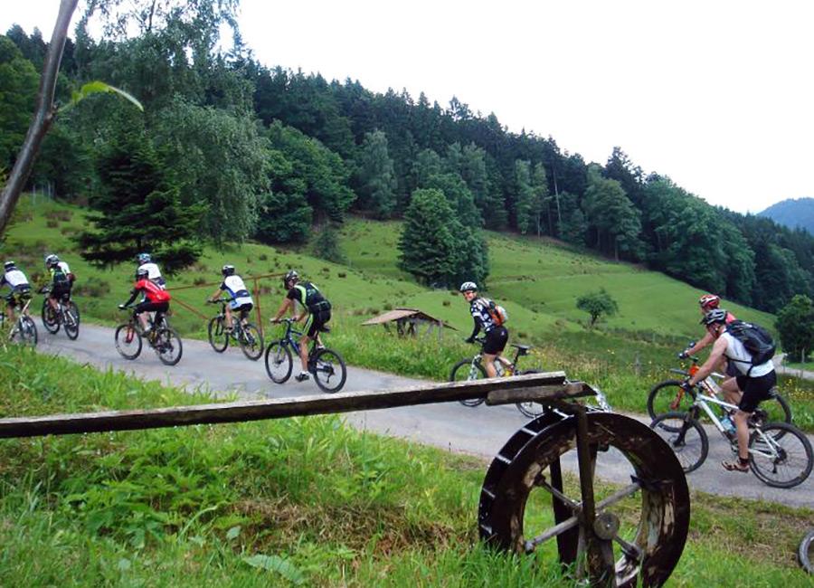MTB in der Gruppe, mitten im Schwarzwald. Foto: Copyright Ritzelrocker