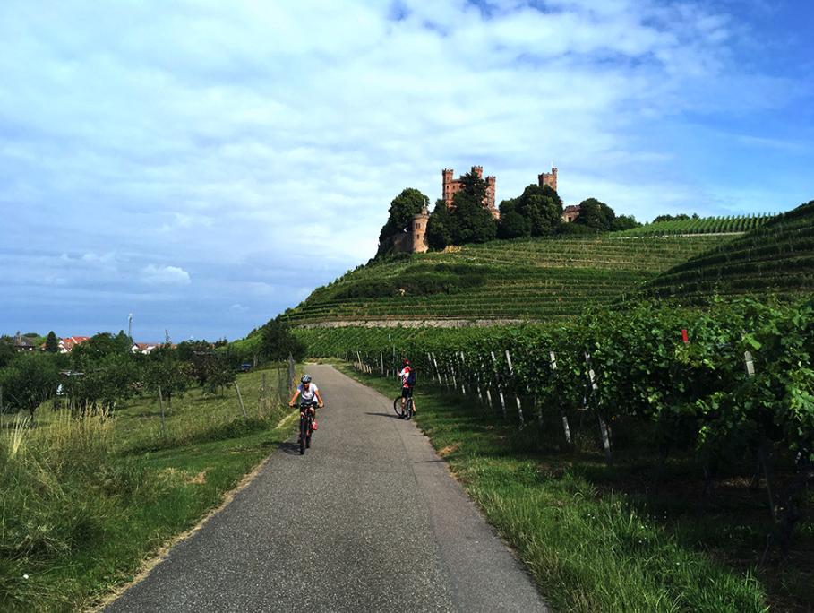 Kinzigtalradweg, bei Ortenberg, Offenburg