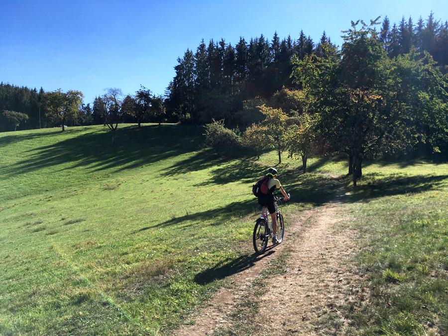Die Hügel im Mittleren Schwarzwald - ein Paradies für Mountainbiker