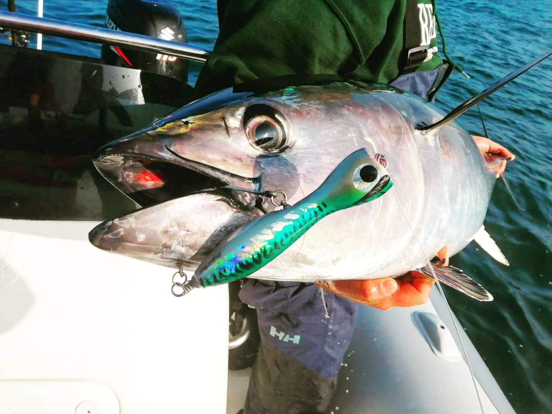 Angler BeppeRedTuna lure:Climber 190F