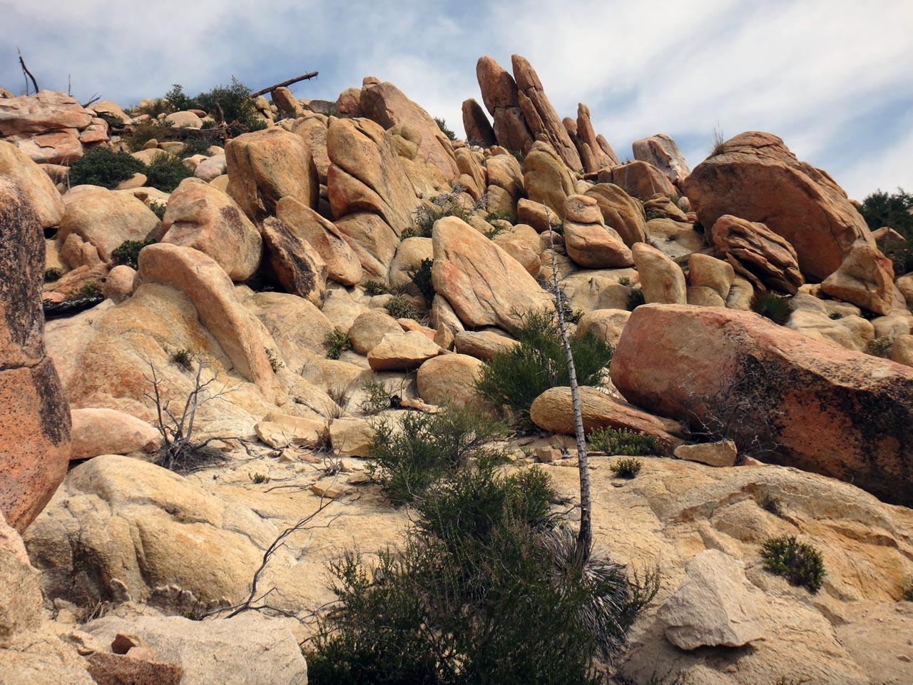 les grès du déserts