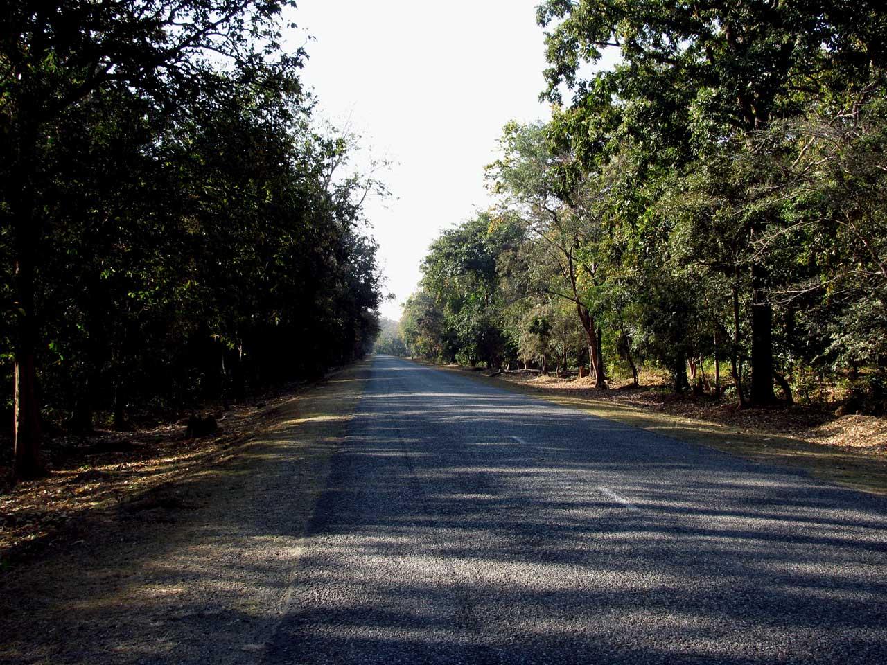 route du Terai