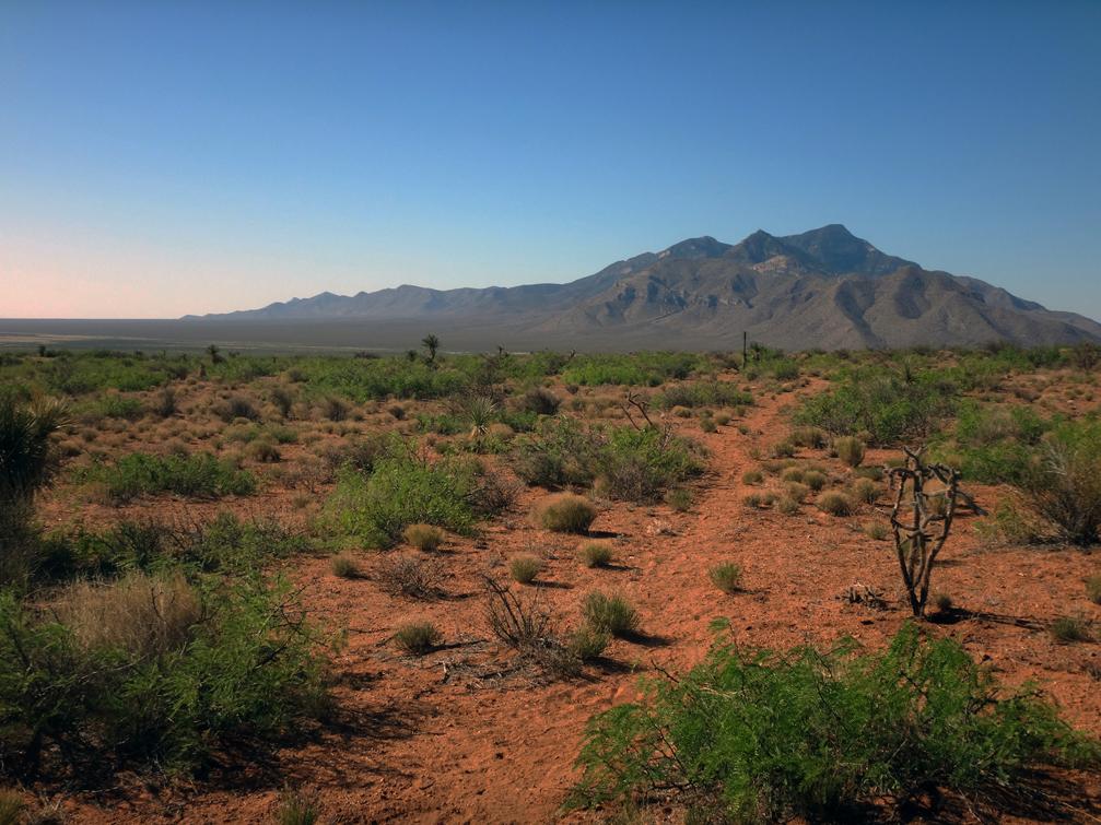 le début du désert