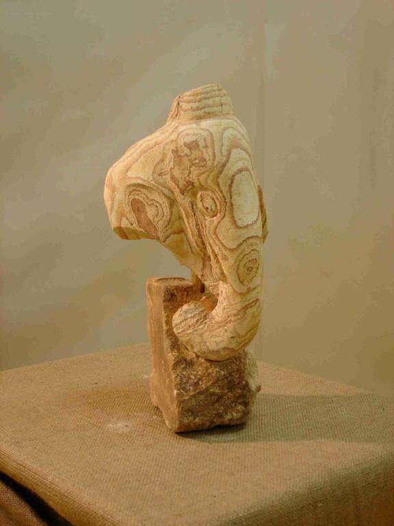 Tête éléphant - Calcaire