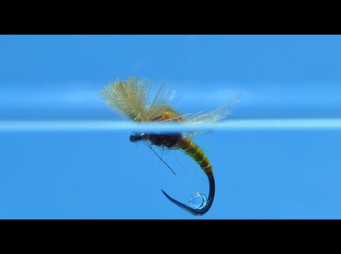 massimiliano mattioli, flyfishing, fly tying