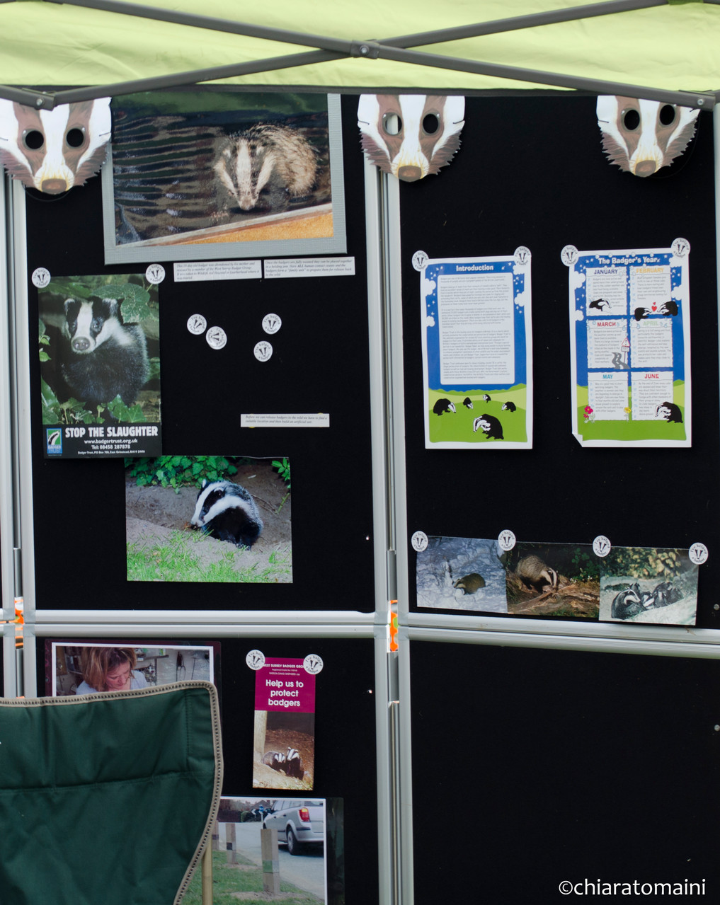 Badger Trust stall - @ChiaraTomaini