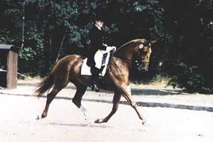 Astrid Smolinski mit Ashanti, Landesmeisterschaften 2000 in Hannover