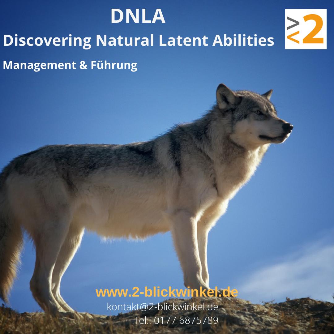 Management & Führung