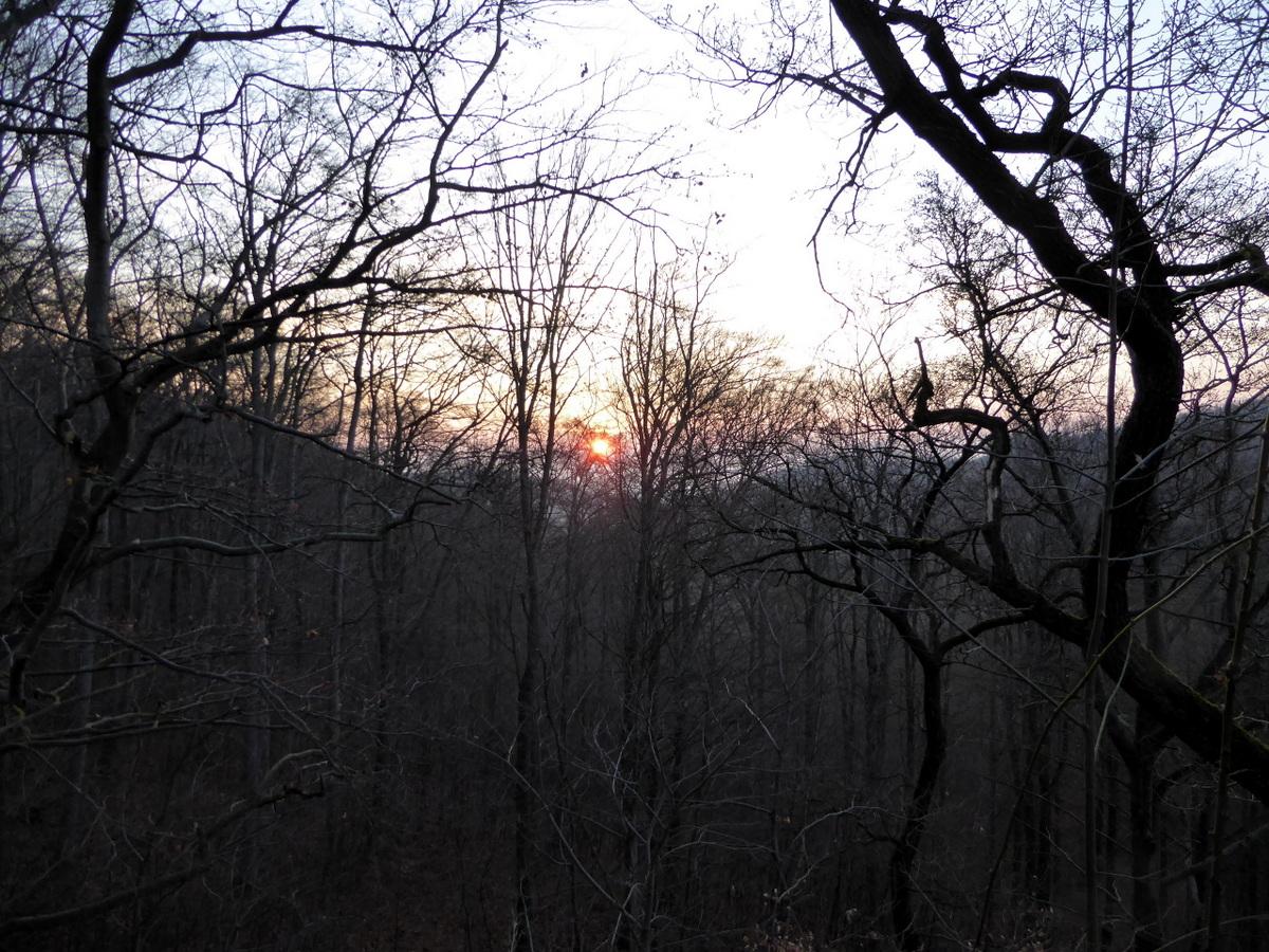 Sonnenaufgang im Braunesumpftal zum Frühlingsanfang