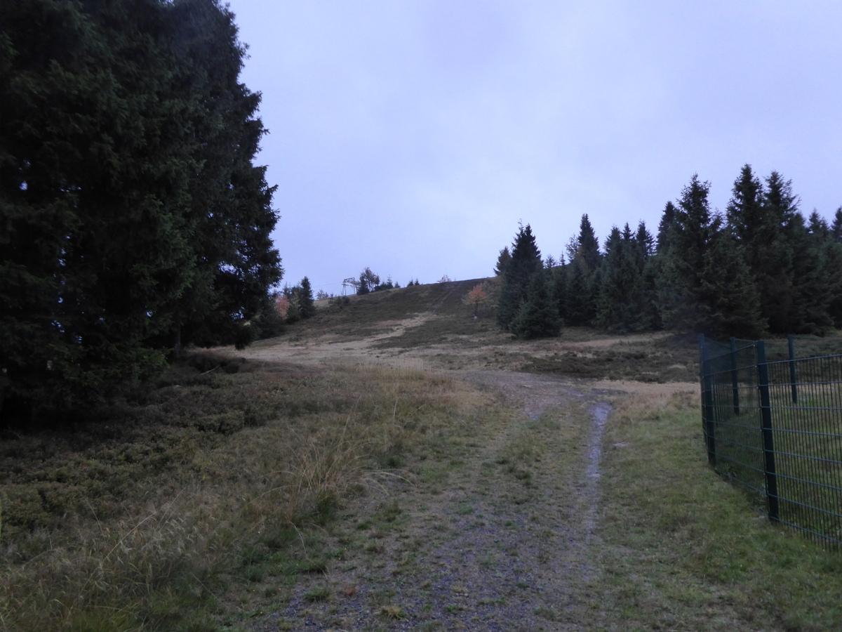 Der Aufstieg auf den Sonnenberg in der Dämmerung