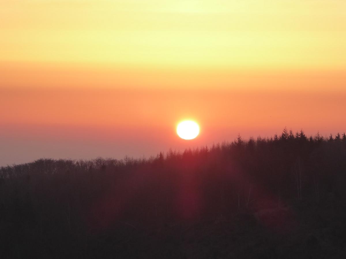Die Sonne steht am Himmel