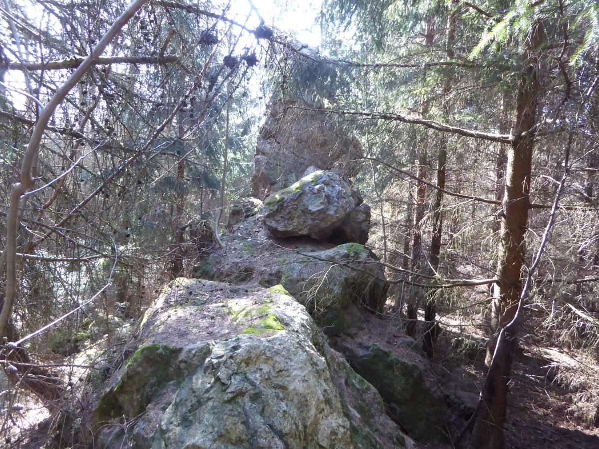 Die Silberwand aus Quarzit im Walde