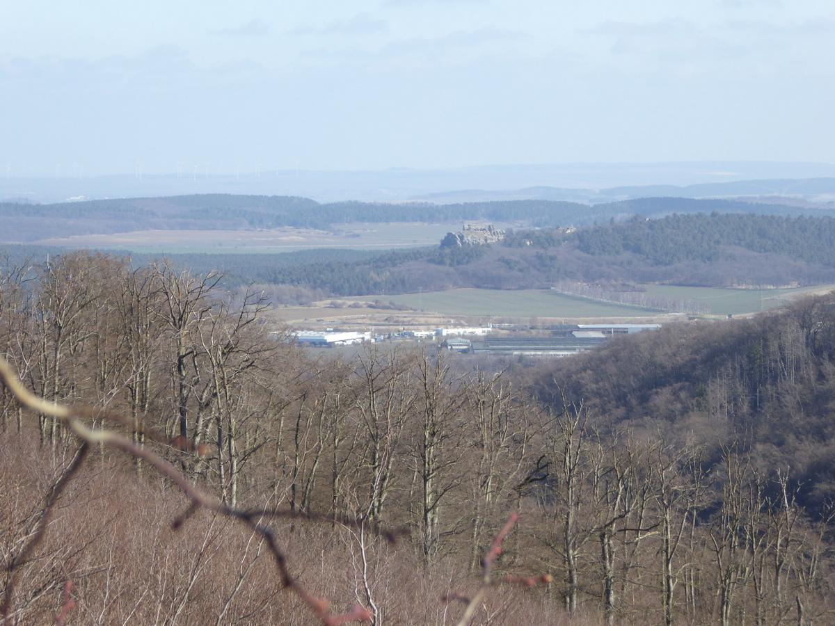 Blick vom benachbarten Aussichtsturm zum Regenstein