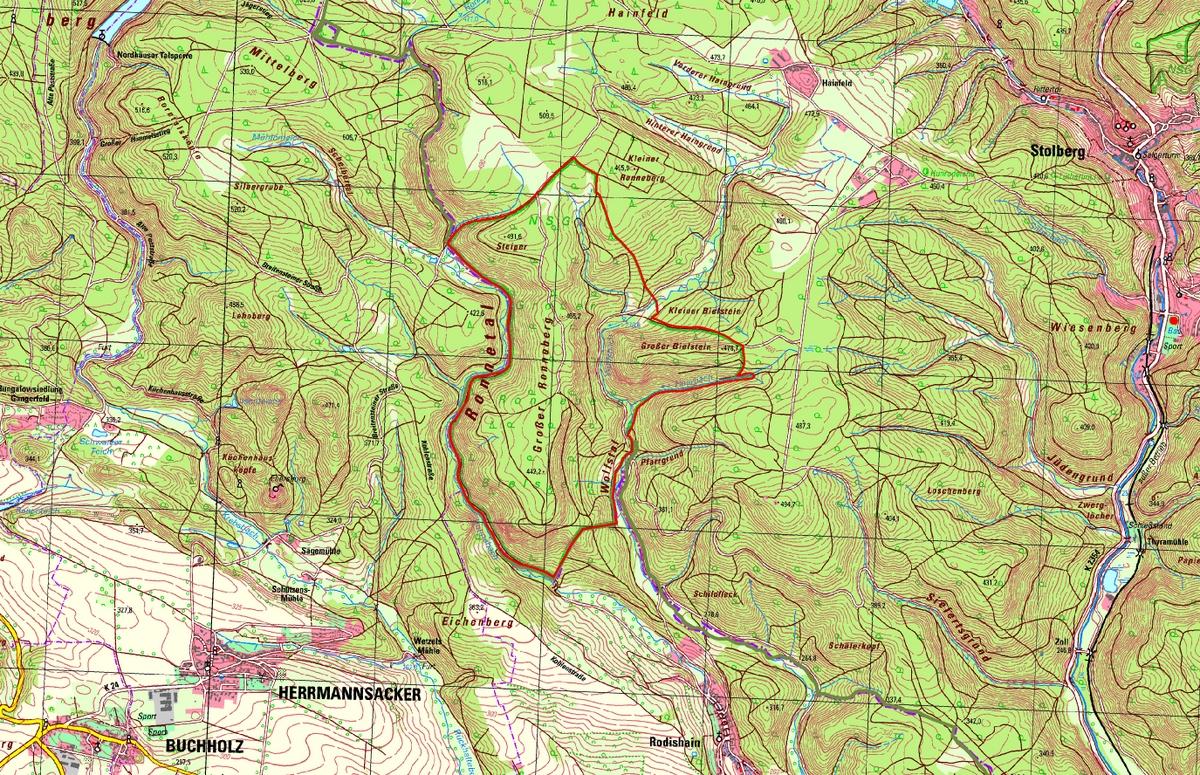 Die Karte mit dem Wiesenberg im Osten mit seine zwei Kuppen