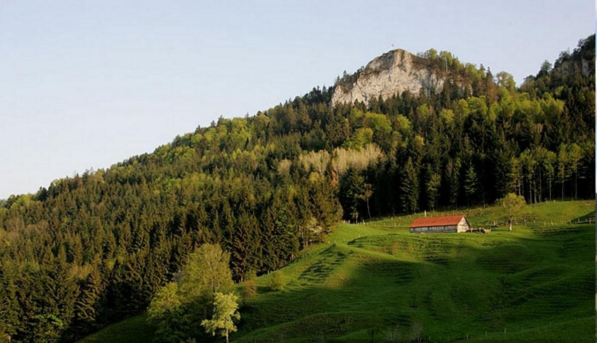 Schweizer Belchen