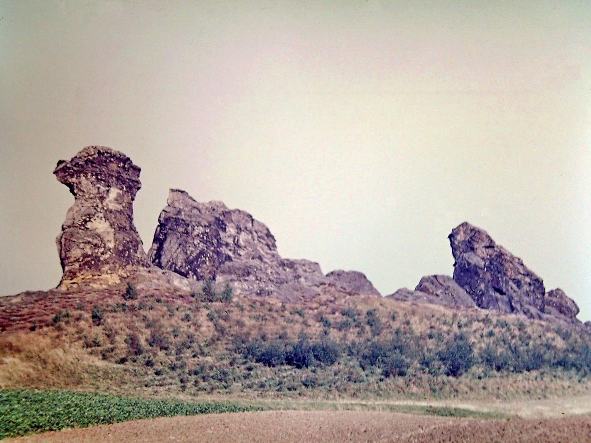 Der Berg ohne alten Baumbewuchs um 1950