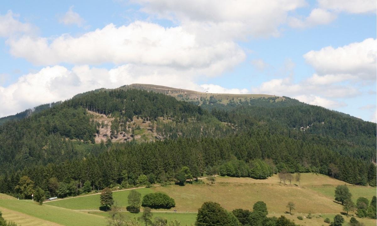 Der Schwarzwaldbelchen