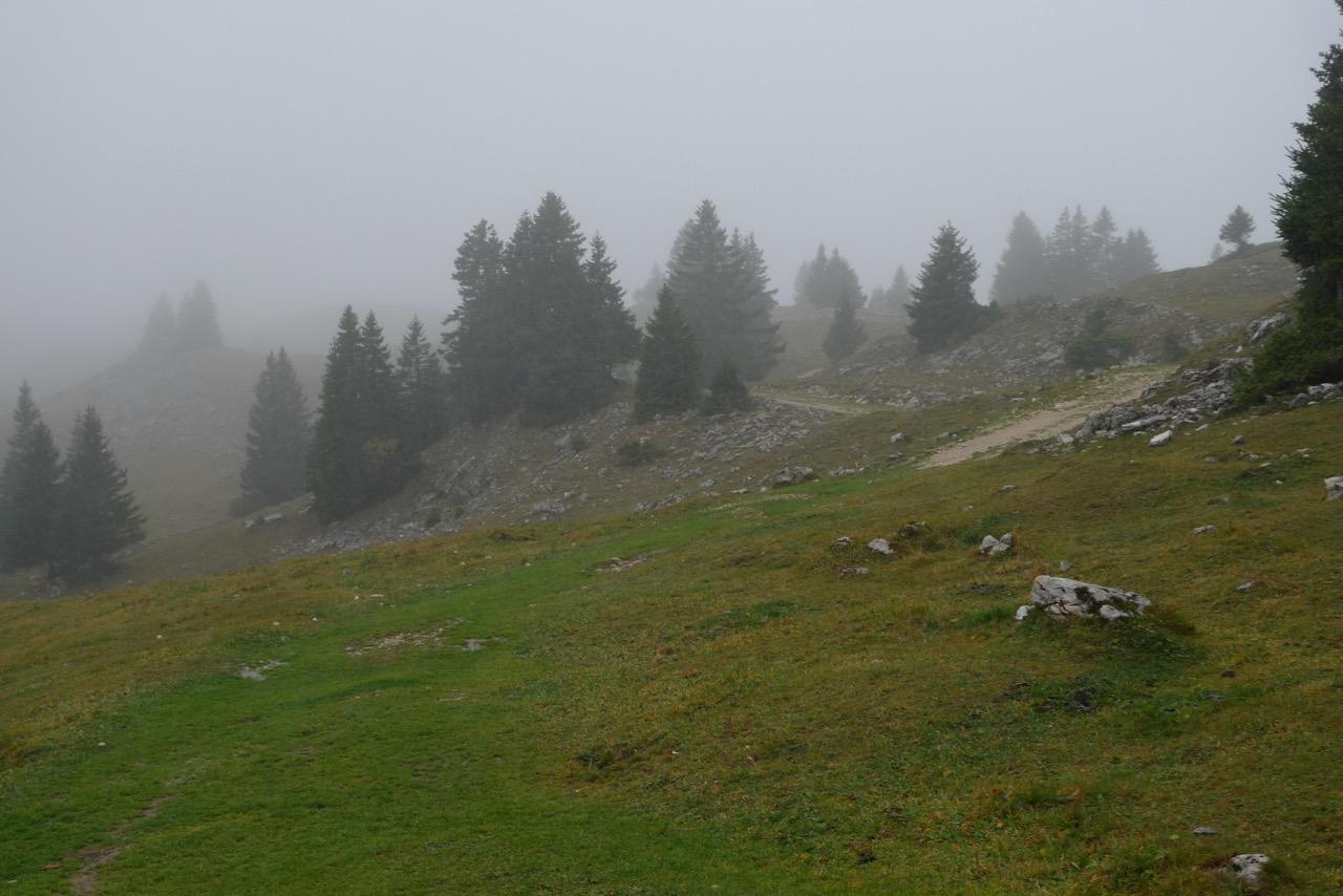 Windiger und nasser Mont Tendre, der höchste Schweizer Juragipfel