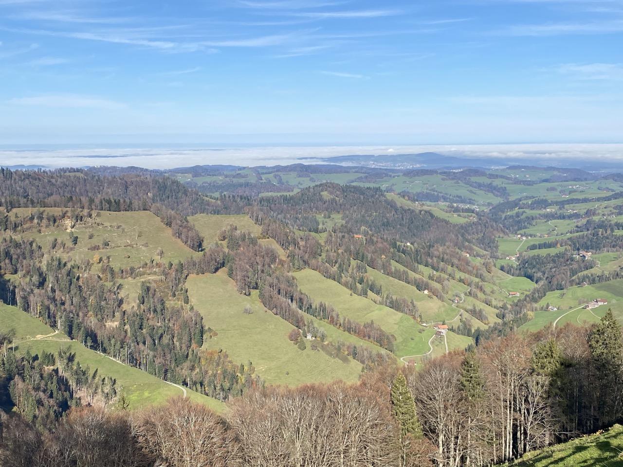 Blick ins untere Toggenburg