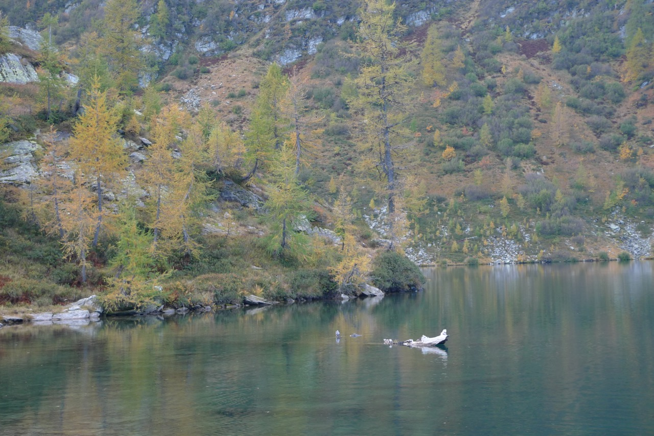 Herbststimmung am Lago d'Alzasca