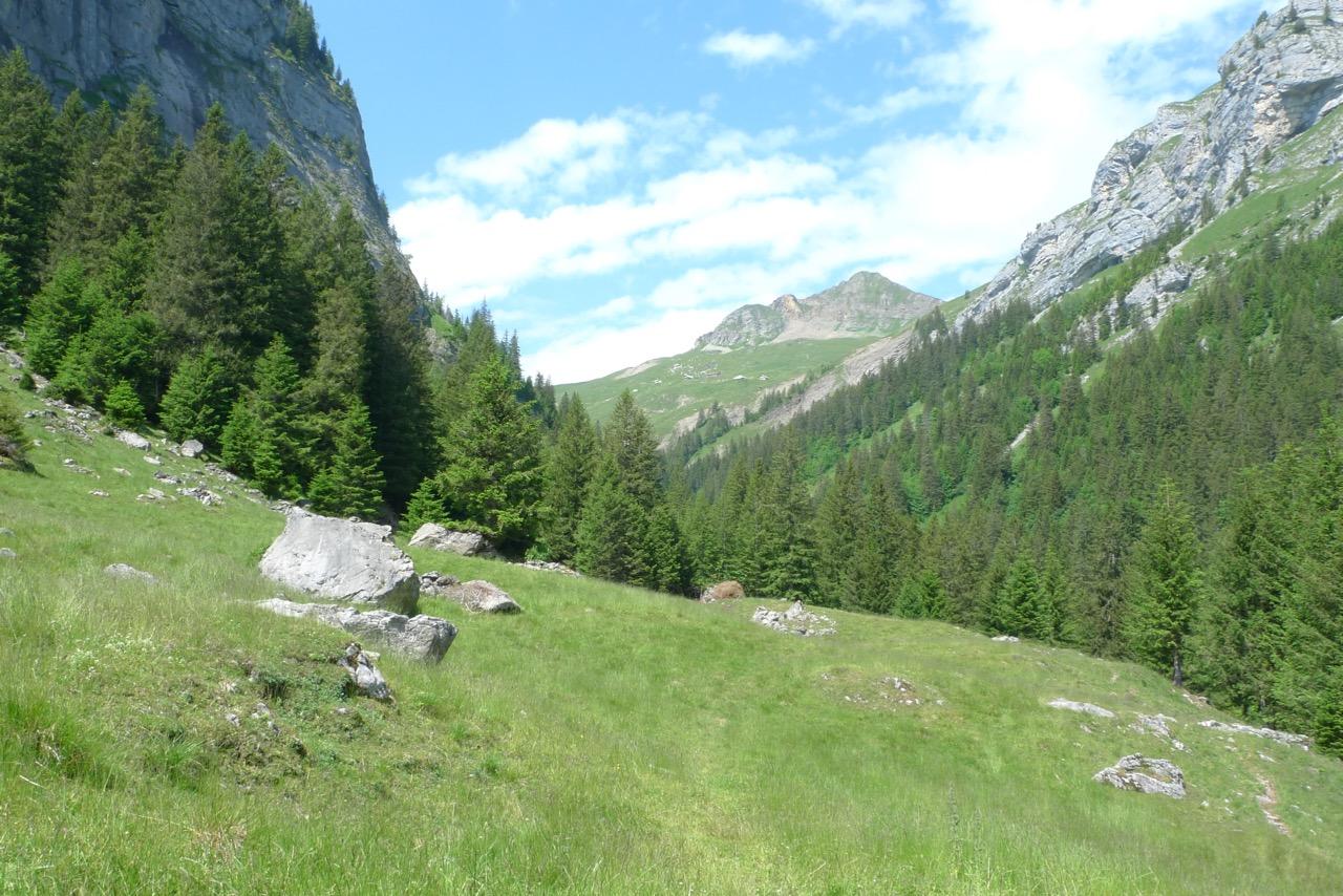Aufstieg im Innenbachtal in der Sommerhitze