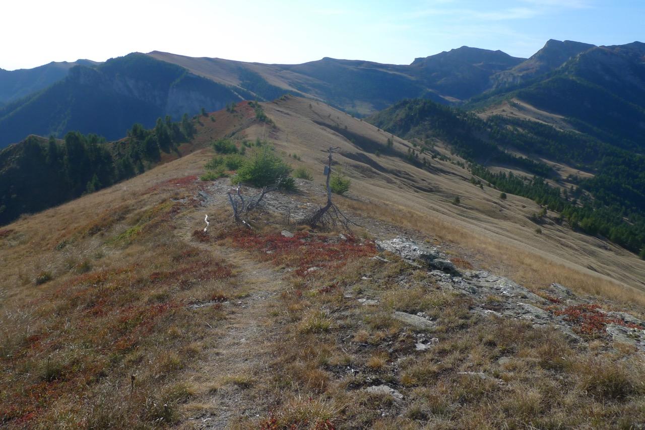 Aussichtsreiche Kammwanderung vom Monte Buch