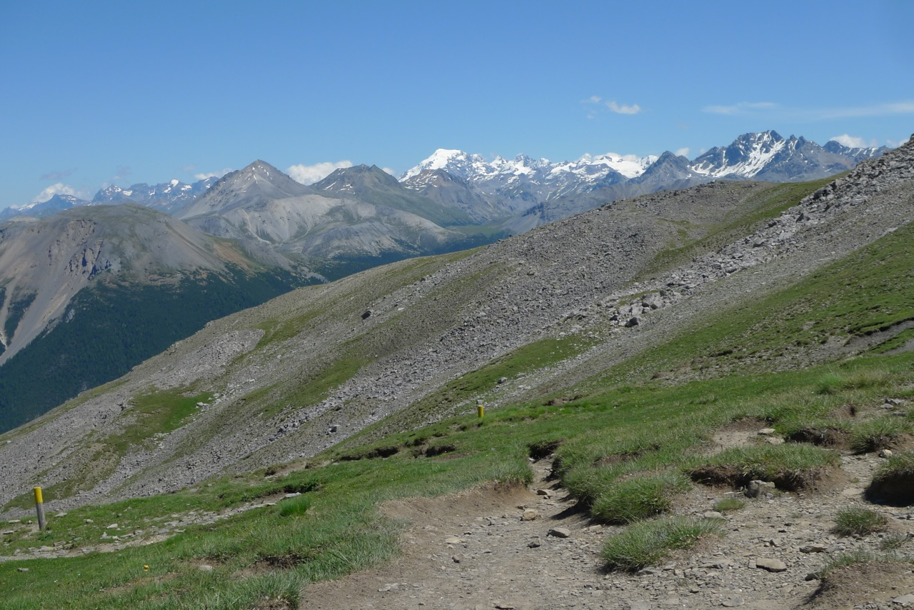 Aufstieg zum Murtèr, im Hintergrund der Ortler