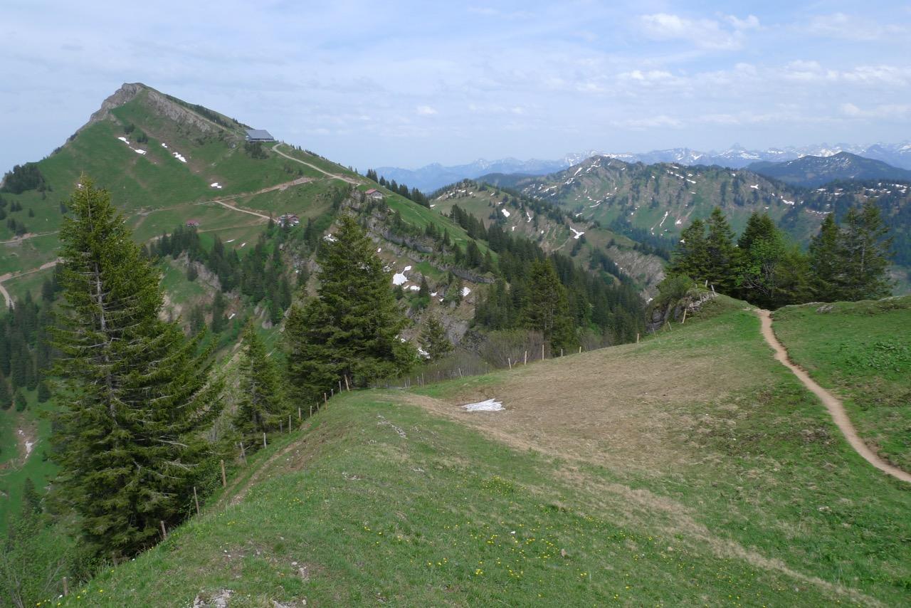 Gipfel des Hochgrats, höchste Erhebung der Nagelflukette