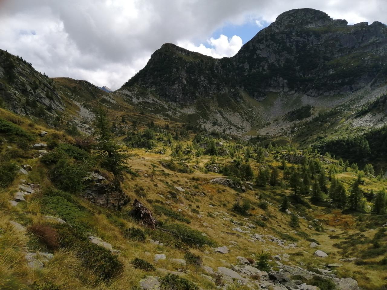 Auf der Alpe di Cansgei