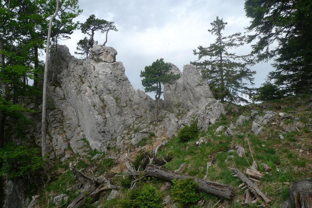 Aufstieg zum höchsten Punkt der Aiguilles de Baulmes