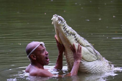 crocodile man false friends english lernen grammatik kostenlose pdf gratis