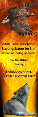Partner Frank Langhanke | www.naturfotografien.net
