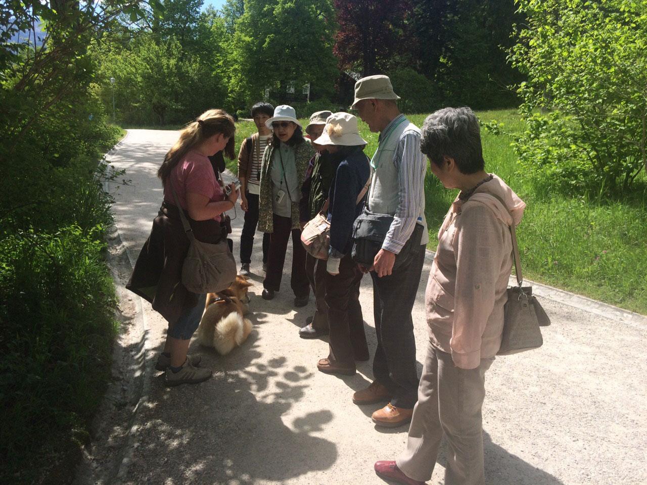"""Schloß Linderhof - großes Hallo bei einer japanischen Reisegruppe: """"Hachiko - Hachiko !!!"""""""