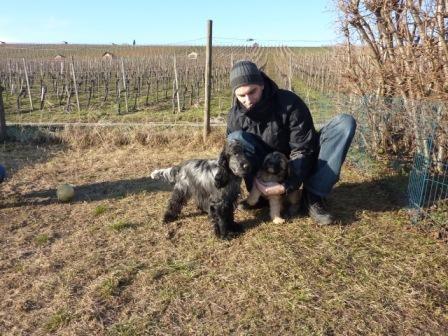 09.022011 Cooper und Freund Calle auf dem Hundeplatz!