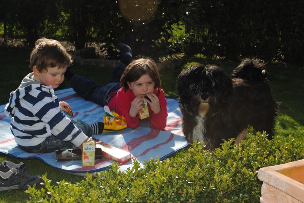 Louis, Hannah und Bodhi beim Picknick