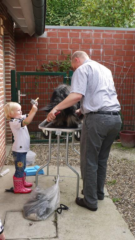 Dana hilft schon bei der regelmäßigen Fellpflege mit!