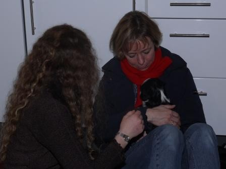 29.12.2010 Cima hat Besuch