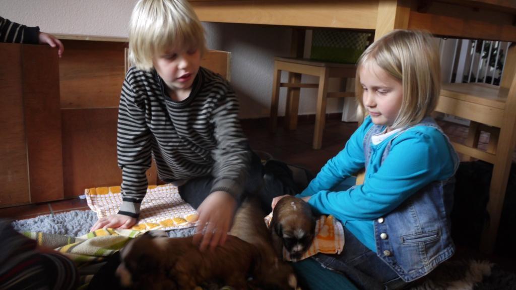 11.12.10 Dana, Tim, Meike und Hannes!