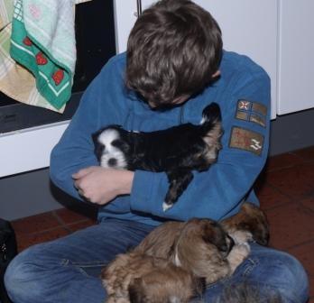29.12.2010 Cima hat Besuch, bei dir bleib ich!