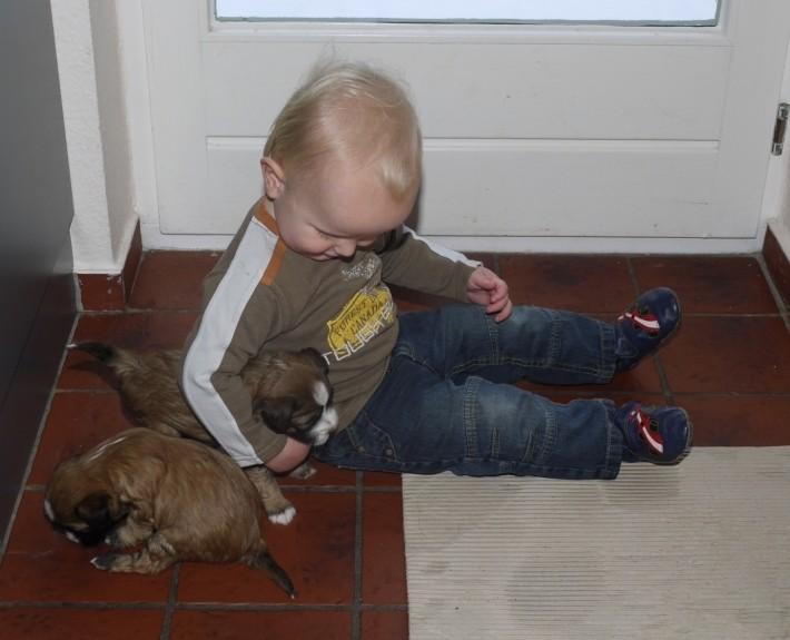 Tim und seine Baby - wowows...
