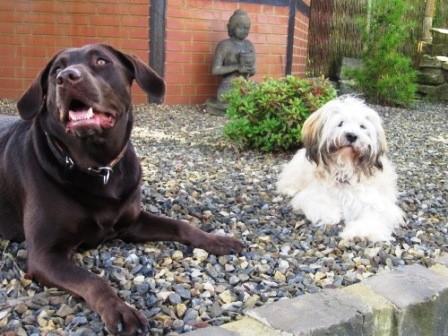 Lilly und Freund Pepper