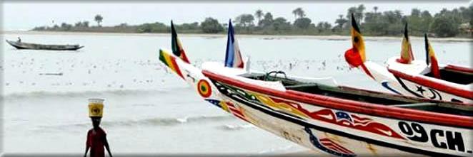 Acción Papalagi 2013 Bantancountou - Grupo Scout Chaminade de Cádiz - Pesca Senegal