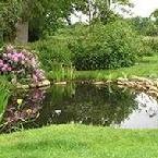 Pond buildergarden ponds
