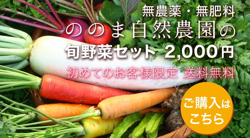 無農薬・無肥料、ののま自然農園の旬野菜セット2000円 初めてのお客様限定、送料無料 ご購入はこちら
