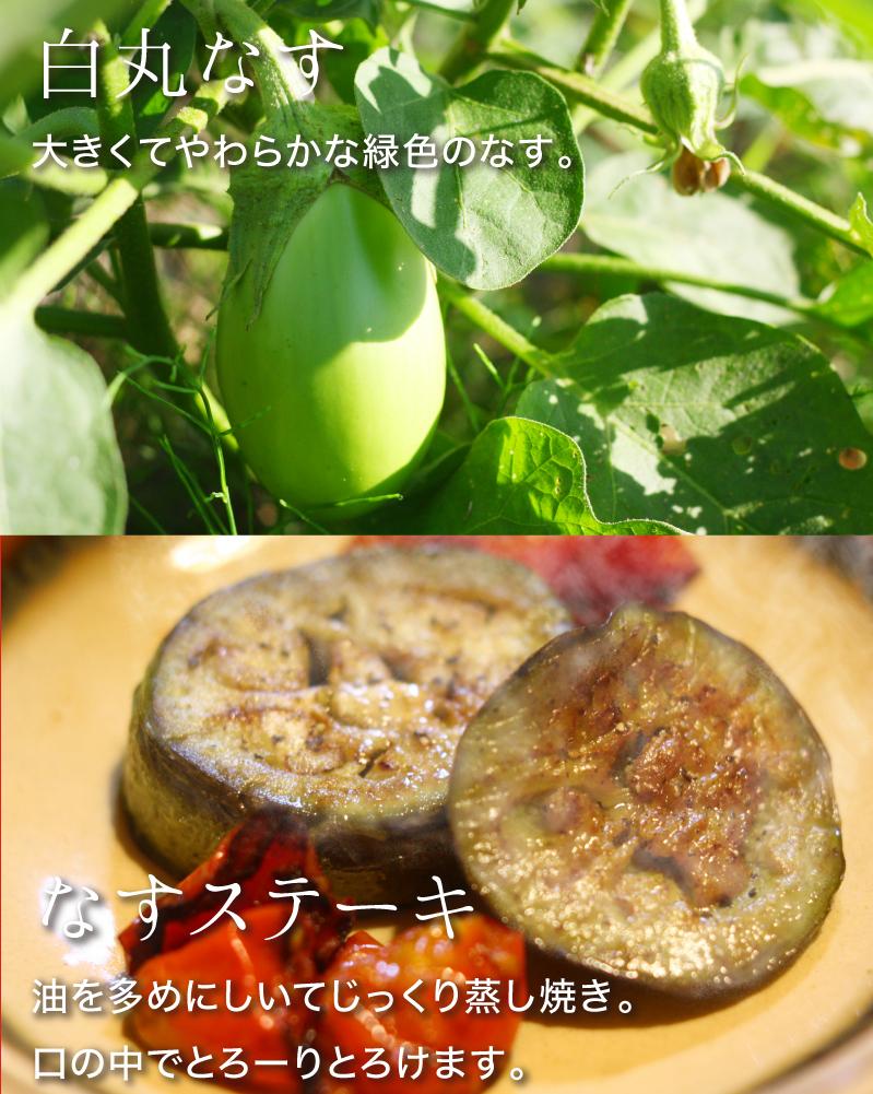 白丸なす:大きくてやわらかな緑色のなす。なすステーキ:油を多めにしいてじっくり蒸し焼き。口の中でとろーりとろけます。