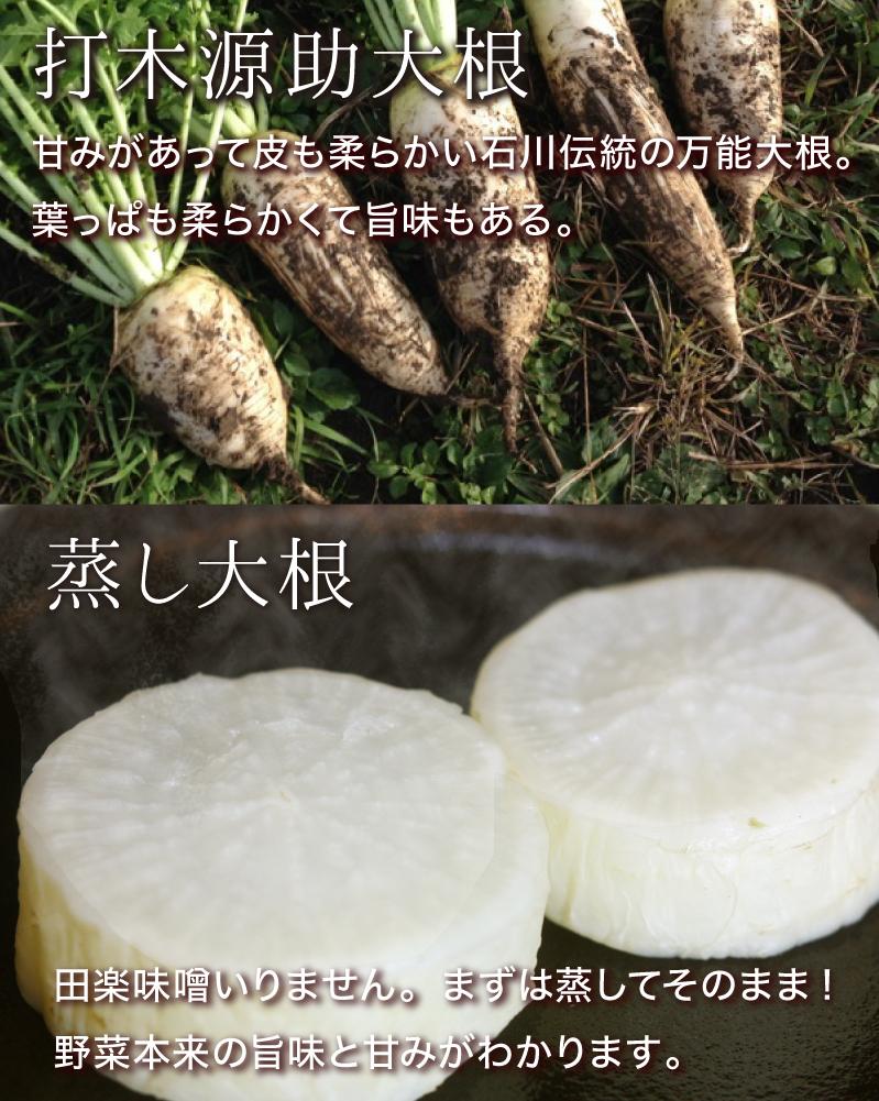 打木源助大根:甘みがあって草も柔らかい石川伝統の万能大根。葉っぱも柔らかくて旨味もある。蒸し大根:田楽味噌いりません。まずは蒸してそのまま!野菜本来の旨味と甘みがわかります。