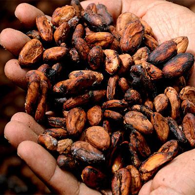 """Baci di Dama """"Pepite al Cacao"""" 2"""