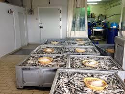 La anchoa de Sabtoña