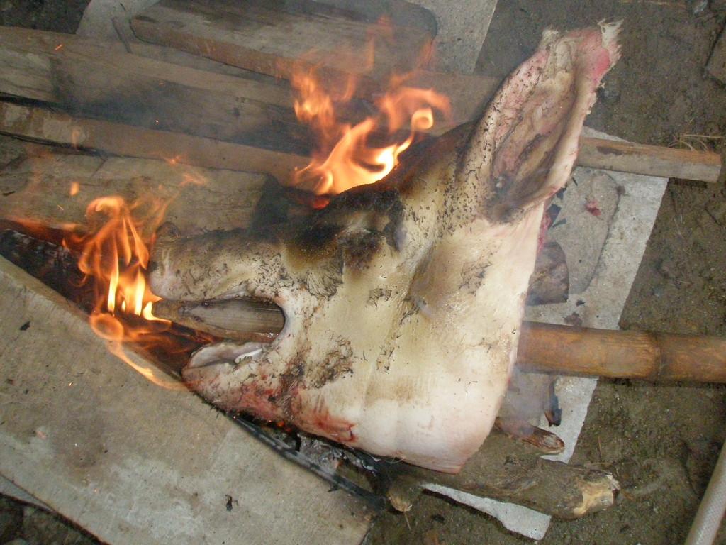 豚の頭の毛は火に炙ってからこそぎ落とします。さっきまで生きてたのに。